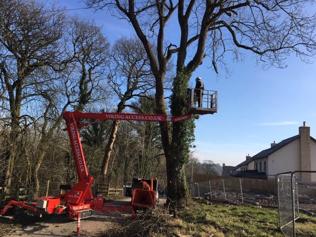 Tracked spider for tree surgery